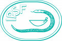 """IPSF join the """"Remember me"""" campaign"""