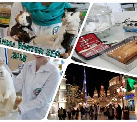 Pharmacology Research and Global Village  Trip