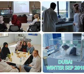 Research activities and breakfast with DPCSU office