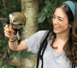 The Tafi Atome Monkey Sanctuary