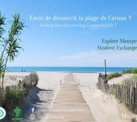 MONTPELLIER - Feeling like discovering Carnon beach?