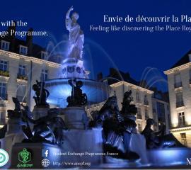 NANTES - Feeling like discovering the Place Royale of Nantes?