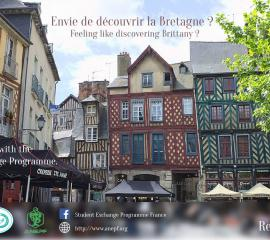 RENNES - Feeling like discovering Brittany?