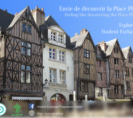 TOURS - Feeling like discovering the Place Plumereau?