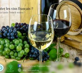 vin - Do you want to taste french wines?